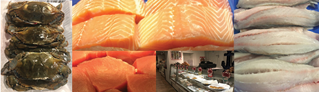 Fresh Fish Flourtown